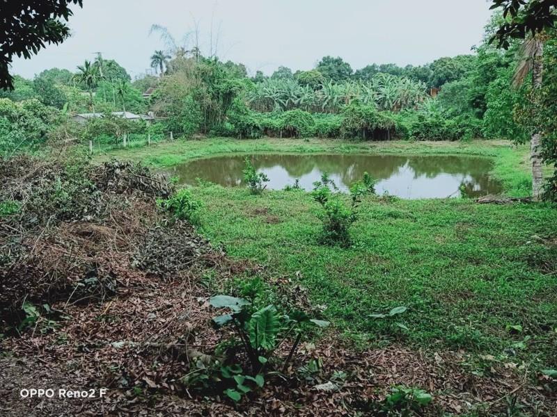 Ảnh của Cần bán lô đất 2400m2 tại xã hòa sơn, lương sơn, hòa bình, giá tốt
