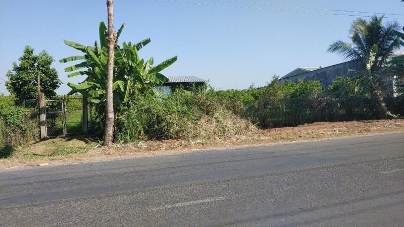 Ảnh của Gia đình cần bán 7941m2 đất vườn hiện đang trồng cam xoàn