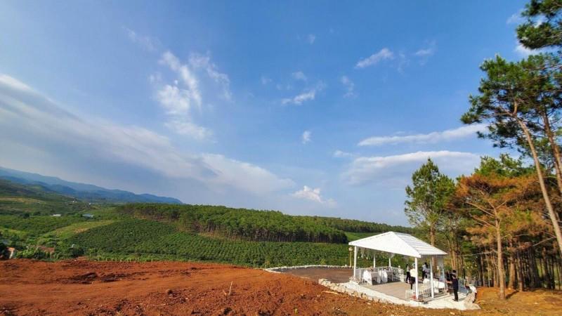 Ảnh của Bán đất đồi bảo lộc view thung lũng thông xanh ngắt tặng kèm 1 căn biệt thự và vườn hoa