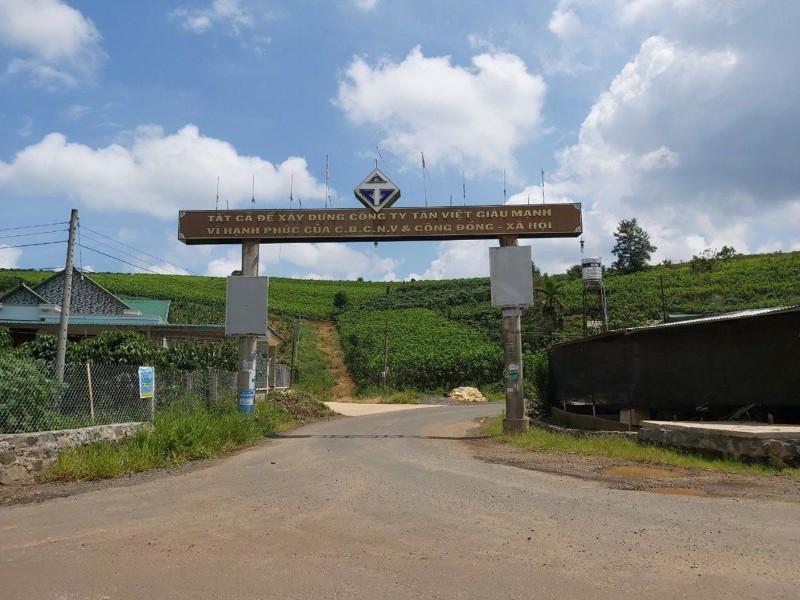 Ảnh của Bán 4.488 m2 đất xã đambri tp b��o lộc, tỉnh lâm đồng