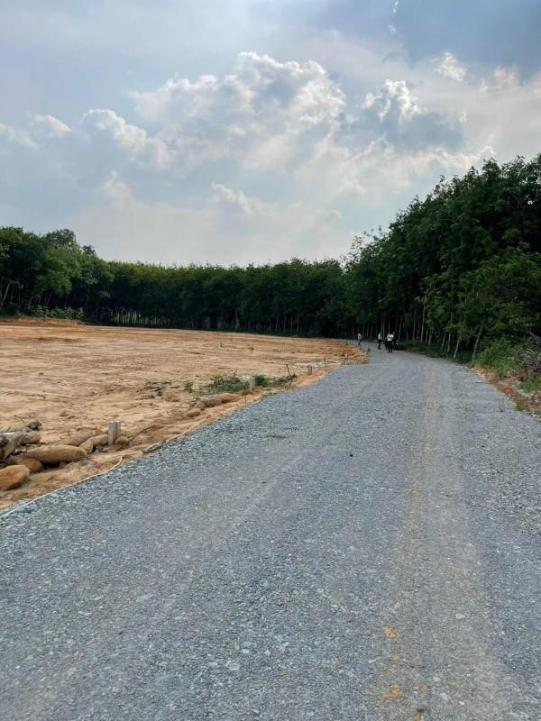 Ảnh của Đất vĩnh tân đường trường lái dt 350m2 giá chỉ 900tr rẻ nhất khu vực thích hợp đầu tư