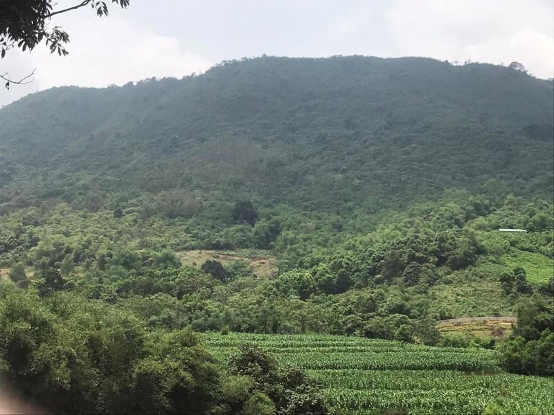 Ảnh của Đất nghỉ dưỡng tại phú mãn quốc oai view núi đồi thơ mộng với thiên nhiên 7,5tr/m2 lh 0964.068.713