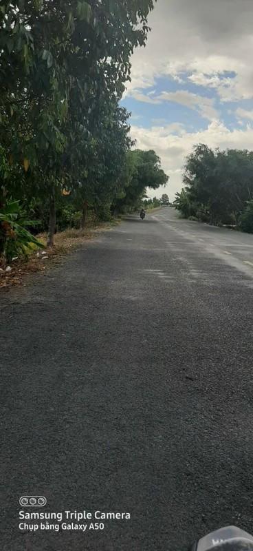 Picture of Chính chủ cần bán đất thổ cư có 200 m thổ cư huyện thới lai cần thơ