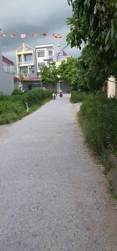 Picture of Bán lô đất thổ cư 100m2 tại phường bạch thượng,thị xã duy tiên,tỉnh hà nam