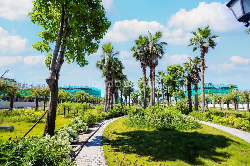 Ảnh của Biệt thự gần hồ yên sở có hầm đậu 2-3 ô tô, hướng nam cực đẹp giá từ 120tr/m2