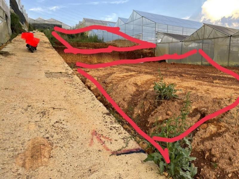 Picture of Cần bán lô đất đẹp tại đường nguyễn hữu cầu, p.12, tp.đà lạt, giá đầu tư