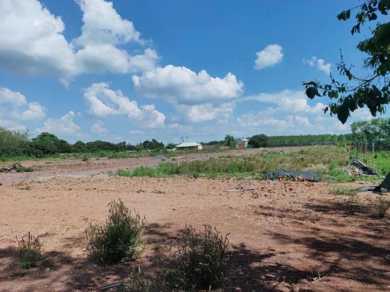 Ảnh của Bán đất mặt tiền khu vực công ty longwell, 800 triệu, sổ riêng