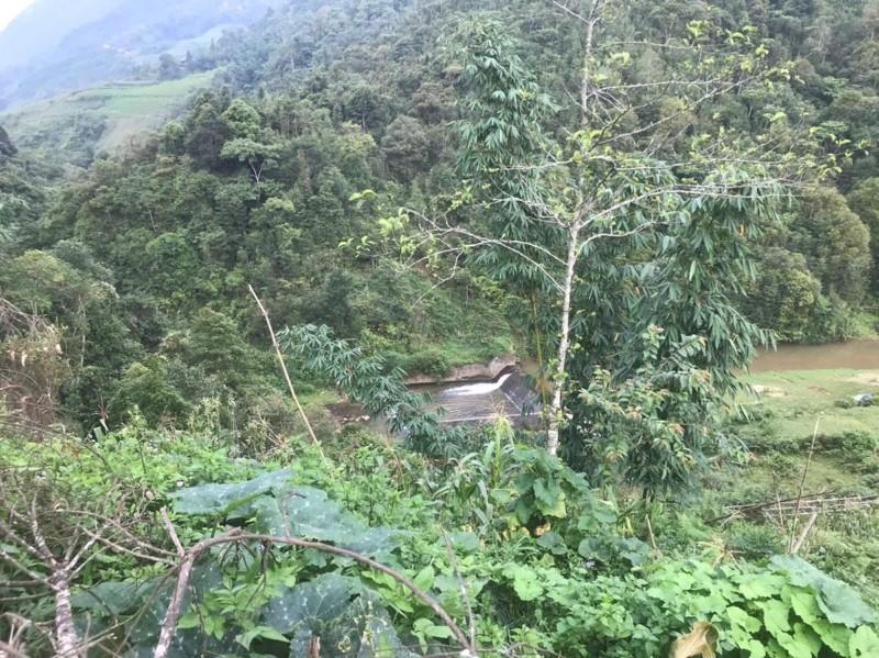 Ảnh của Bán cắt lỗ 3000m2 đất tả phìn sapa giá rẻ thích hợp đầu tư kinh doanh đa dạng