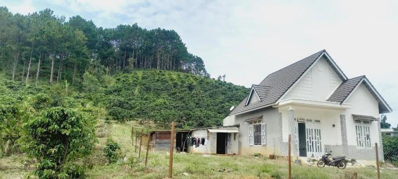 Ảnh của Bán đất tặng nhà mái thái - vị trí giáp đà lạt giá rẻ
