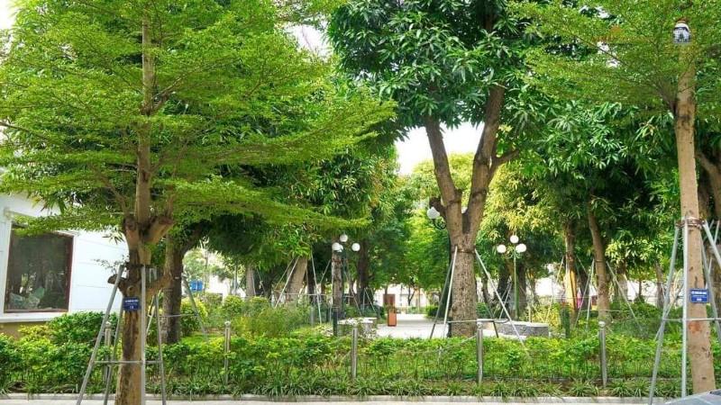 Ảnh của Suất ngoại giao nhà vườn 115m2 quận cầu giấy- nhận nhà ở ngay